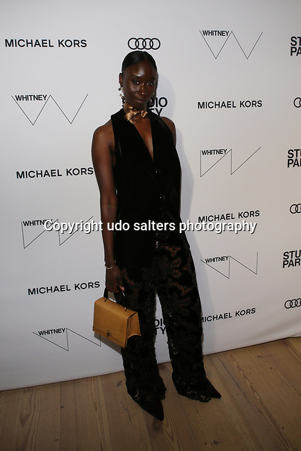 the Whitney Museum's annual Spring Gala and Studio Party 2017 sponsored by Audi and Michael Kors  in New York City.