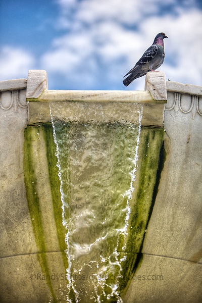 Dupont Circle Fountain Washington DC