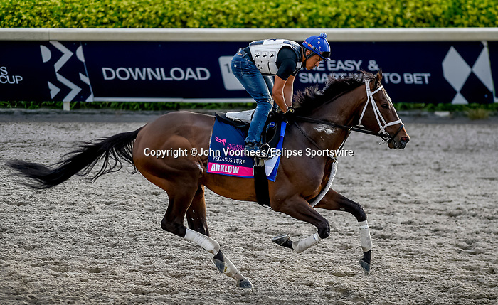 January 24, 2020: Arklow gallops as horses prepare for the Pegasus World Cup Invitational at Gulfstream Park Race Track in Hallandale Beach, Florida. John Voorhees/Eclipse Sportswire/CSM