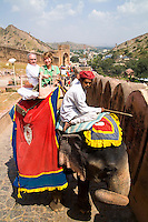 Retired tourists on holiday taking elephant ride, Amber Fort, Rajasthan Jaipur, India