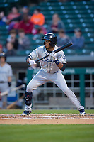 Columbus Clippers center fielder Greg Allen (1) shows bunt during an International League game against the Indianapolis Indians on April 29, 2019 at Victory Field in Indianapolis, Indiana. Indianapolis defeated Columbus 5-3. (Zachary Lucy/Four Seam Images)