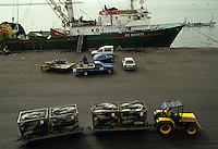 Transport of Tuna fish to the processing plant