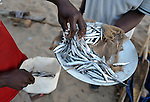 Small fish are sold at the lakeshore n Karonga, a town in northern Malawi. Fish from Lake Malawi, which is bordered by Malawi, Tanzania and Mozambique, provide an important part of people's diet in this area.