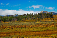 Gardner's Hole in Yellowstone National Park. Landscape of valley with the Gallatin mountain range in the background.