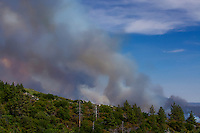 Fire plumes from the Mountain Center fire on July 16, 2013.
