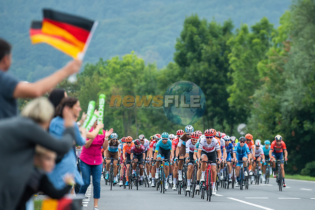 The peloton in action during Stage 4 of the Deutschland Tour 2019, running 159.5km from Eisenach to Erfurt, Germany. 1st September 2019.<br /> Picture: ASO/Marcel Hilger | Cyclefile<br /> All photos usage must carry mandatory copyright credit (© Cyclefile | ASO/Marcel Hilger)