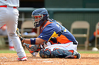 Houston Astros catcher Carlos Corporan #22 during a Spring Training game against the St. Louis Cardinals at Osceola County Stadium on March 1, 2013 in Kissimmee, Florida.  The game ended in a tie at 8-8.  (Mike Janes/Four Seam Images)