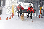 Vail Mountain's Avalanche Rescue Dog, Henry dismounts the chair lift with his owner, Vail ski patrol supervisor, Chris 'Mongo' Reeder and Vail patrolman  Ben Kurtz.