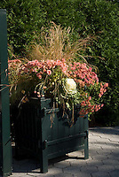 Fall winter container garden with kale, chrysanthemums, ornamental grass