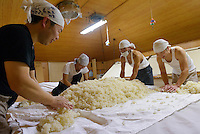 Brewery workers preparing koji rice. Tsuji Honten Sake, Katsuyama city, Okayama pref, Japan, January 31, 2014. Okayama is famous for its earthy full-bodied sake. In January and February 2014 a 5-day tour of breweries in the prefecture was organised by Sake Brewery Tours (www.saketours.com).