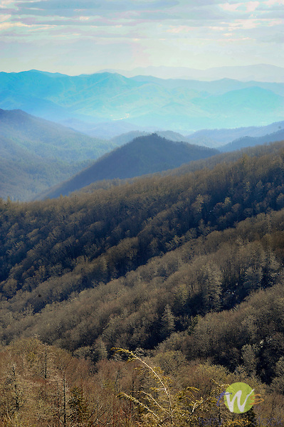 Southern view of Smokey Mountain range near Newfound Gap, Route 441. March.