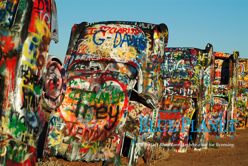 "Cadillac Ranch in Amarillo, Texas, USA, United States. The Cadillac Ranch, located along the tatters of historic Route 66, was built in 1974, brainchild of Stanley Marsh 3, the helium millionaire who owns the dusty wheat field where it stands. Marsh and The Ant Farm, a San Francisco art collective, assembled used Cadillacs representing the ""Golden Age"" of American Automobiles (1949 through 1963). The ten graffiti-covered cars are half-buried, nose-down, facing west ""at the same angle as the Cheops' pyramids."""
