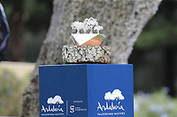 The winners trophy on display at the 1st tee during Sunday's storm delayed Final Round 3 of the Andalucia Valderrama Masters 2018 hosted by the Sergio Foundation, held at Real Golf de Valderrama, Sotogrande, San Roque, Spain. 21st October 2018.<br /> Picture: Eoin Clarke | Golffile<br /> <br /> <br /> All photos usage must carry mandatory copyright credit (&copy; Golffile | Eoin Clarke)
