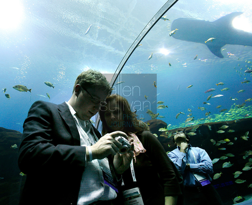 Brian Strickland of Washington, D.C. (left) peruses his digital photos with Briana Mackey of Las Vegas at the Georgia Aquarium during the opening reception for the annual meeting of the International Association of Exhibition Managers on Tuesday, Nov. 29, 2005. Pedro Garcia of Las Vegas (right) admires a whale shark swimming above. The reception at the Georgia Aquarium was one way to impress on the attendees Atlanta's viabilty as a convention destination.