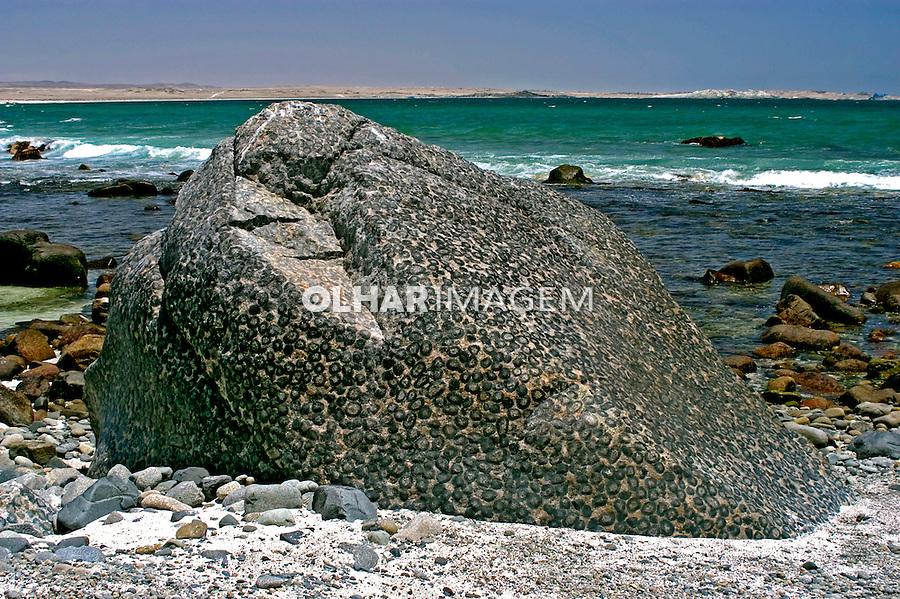 Praia em Antofagasta. Chile. 2004. Foto de Maristela Colucci.