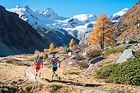 Trail running in the Rosegtal, from Pontresina, Switzerland, during fall colors