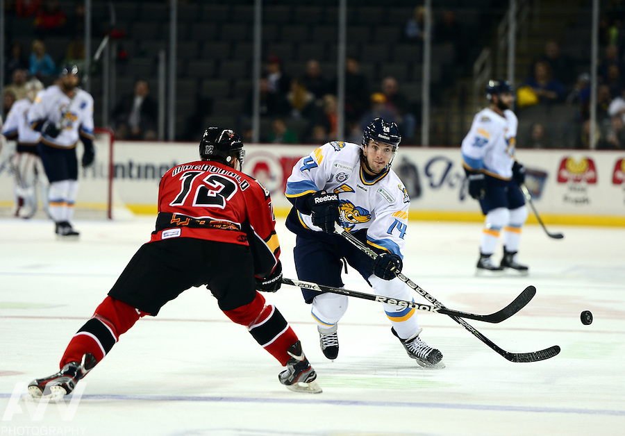 Oct 19, 2012; Toledo, OH, USA; Toledo Walleye center Joey Martin (14) against the Cincinnati Cyclones at Huntington Center: Mandatory Credit: Andrew Weber