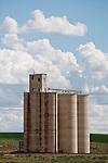 Concrete grain elevators, Mohler, Wash.