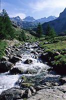 France/06/Alpes-Maritimes/Arrière pays niçois/St Martin Vésubie: Parc du Mercantour: Torrent près de la Madone de Fenestre