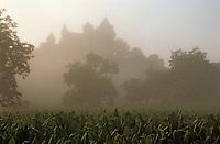 Europe/France/Aquitaine/24/Dordogne/Vallée de la Dordogne/Périgord/Périgord noir/Vitrac: Le Château de Monfort émergeant de la brume à l'aube, au premier plan un champ de tabac