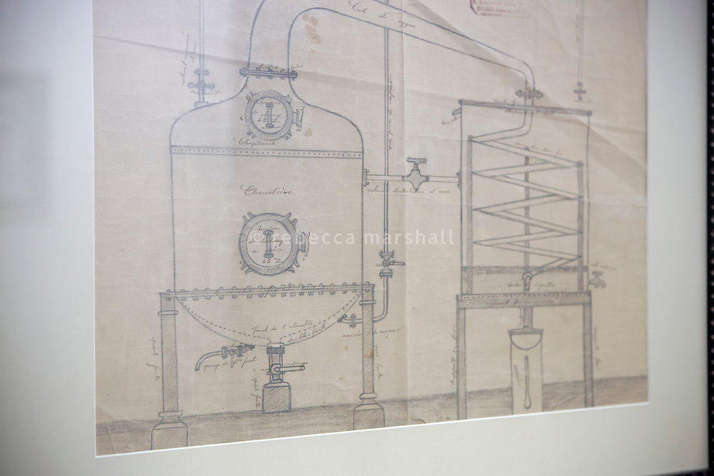 Old sketch on the wall of the Galimard perfume factory and visitor centre, Grasse, France, 3 May 2013