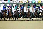 Blame (#5) upsets Zenyatta (#8) by a head in the Breeders Cup Classic.