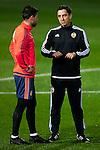 Gary Neville talks to the players - UEFA Champions League -  pre match Training Session - Valencia CF vs Lyon  - Paterna Training Ground - Valencia - Spain - 7th December 2015 - Pic David Aliaga/Sportimage