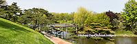 63821-22607 Japanese garden and bridge in spring, Chicago Botanic Garden, Glencoe, IL
