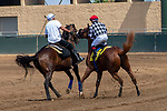 DEL MAR, CA  AUGUST 4:  #4 Tap the Wire, ridden by Drayden Van Dyke, acting up before the Graduation Stakes  in the stretch on August 4, 2018 at Del Mar Thoroughbred Club in Del Mar, CA. (Photo by Casey Phillips/Eclipse Sportswire/ Getty Images)