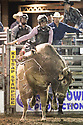 20 Aug 2014: Derek Kolbaba was not able to score in the finals of the Seminole Hard Rock Extreme Bulls competition at the Kitsap County Stampede in Bremerton, Washington.