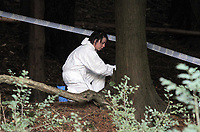 Pictured: A scenes of crimes officer searching for evidence in the woods where the body of Rebecca Aylward was discovered. Monday 25 October 2010<br />