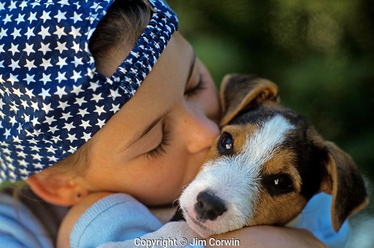Jack Russell Terrier (Parson Terrier) Puppy
