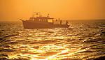 Watermen fish for rockfish south of Kent Island at dawn.