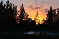 Magnificent Sunset photographed at Delray West Park, Delray Beach, Florida.