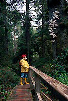 Middle Aged Hiker hiking on Spruce Fringe Trail, Pacific Rim National Park Reserve, West Coast of Vancouver Island, BC, British Columbia, Canada (Model Released)