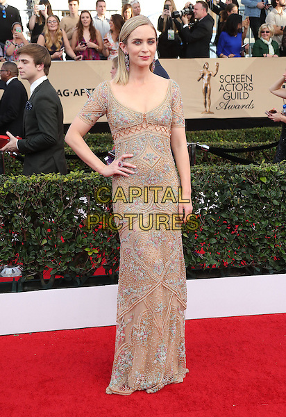 29 January 2017 - Los Angeles, California - Emily Blunt. 23rd Annual Screen Actors Guild Awards held at The Shrine Expo Hall. <br /> CAP/ADM/FS<br /> &copy;FS/ADM/Capital Pictures