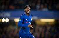 Michy Batshuayi of Chelsea during the Carabao Cup (Football League cup) 23rd round match between Chelsea and Nottingham Forest at Stamford Bridge, London, England on 20 September 2017. Photo by Andy Rowland.