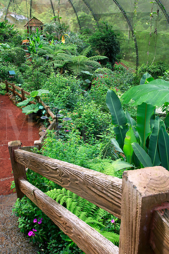 The Butterfly Observatory is the largest in the world, La Paz Waterfall Gardens and Peace Lodge, Costa Rica