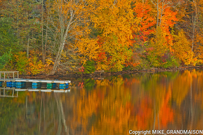 Acadian forest in autumn foliage reflected in the Saint John River with dock. <br />Mactaquac<br />New Brunswick<br />Canada