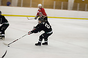 North Carolina Trailblazers women's hockey team during a game against a men's team at the Ice House in Garner.