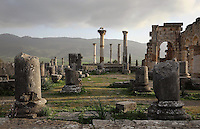 The Roman Basilica, 217 AD, used as courts of justice and city governance, with its colonnaded facade which lined the Forum or marketplace on the right, Volubilis, Northern Morocco. Storks sit on a nest atop one of the columns. The columns of the tetrastyle Capitoline Temple, built 218 AD on top of an existing shrine, can be seen in the background. Volubilis was founded in the 3rd century BC by the Phoenicians and was a Roman settlement from the 1st century AD. Volubilis was a thriving Roman olive growing town until 280 AD and was settled until the 11th century. The buildings were largely destroyed by an earthquake in the 18th century and have since been excavated and partly restored. Volubilis was listed as a UNESCO World Heritage Site in 1997. Picture by Manuel Cohen