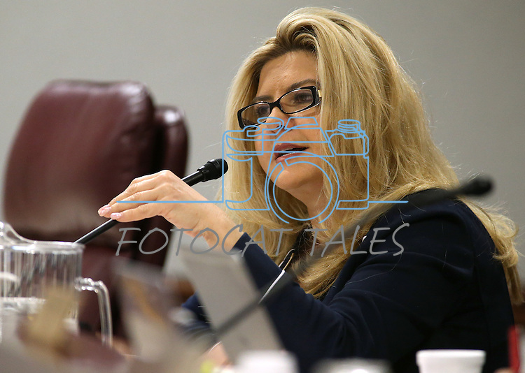 Nevada Assemblywoman Michele Fiore, R-Las Vegas, works in committee at the Legislative Building, in Carson City, Nev., on Thursday, Feb. 19, 2015. <br /> Photo by Cathleen Allison
