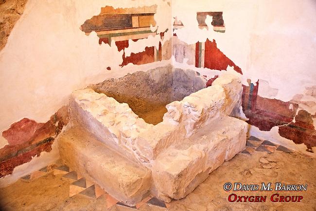 Bath House & Masada Wall-Paintings