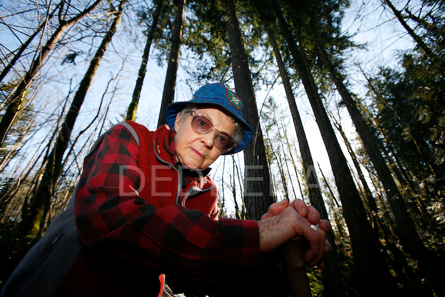 "Ruth Masters, 83, leans on her hiking pole among towering cedars and fir trees in the 18 acre ""Masters Greenway and Wildlife Corridor"" behind her home, an area she donated to the regional parks in Courtenay, BC. Masters, who has climbed up the Comox Glacier in Strathcona Park on Vancouver Island six times since 1938, would like to see the trail to the glacier protected from logging and development. Timber West intends to heli-log the land over which the trail passes."