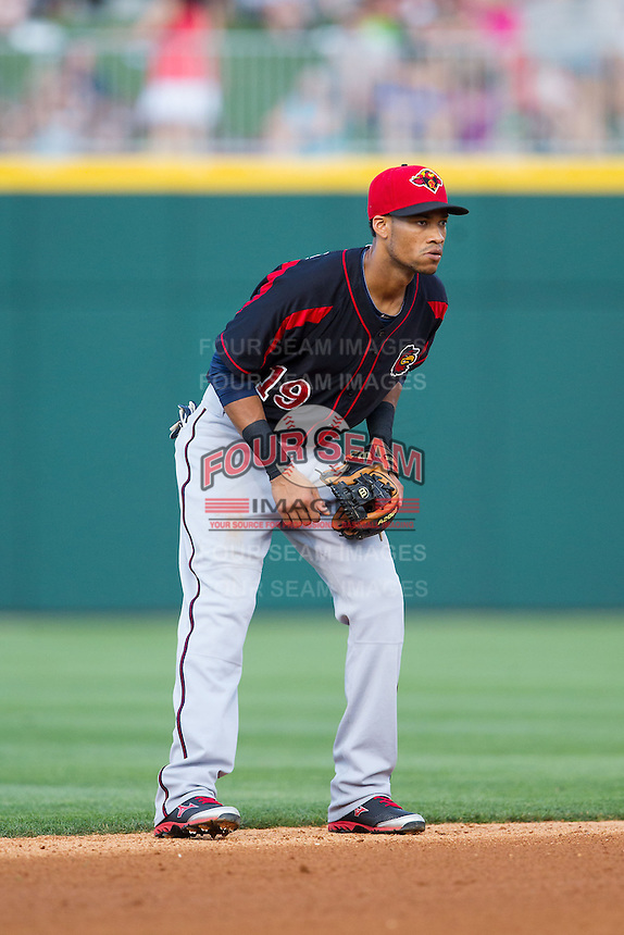Rochester Red Wings shortstop Pedro Florimon (19) on defense against the Charlotte Knights at BB&T Ballpark on June 5, 2014 in Charlotte, North Carolina.  The Knights defeated the Red Wings 7-6.  (Brian Westerholt/Four Seam Images)