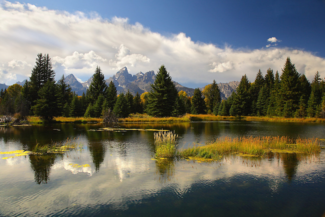 A pond provides the foreground and reflection at Grand Teton National Park, Wyoming
