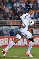 ATENÇÃO EDITOR: FOTO EMBARGADA PARA VEÍCULOS INTERNACIONAIS - SÃO PAULO, SP, 22 DE SETEMBRO DE 2012 - CAMPEONATO BRASILEIRO - SANTOS x PORTUGUESA: André marca o primeiro gol do Santos durante partida Santos x Portuguesa, válida pela 26ª rodada do Campeonato Brasileiro no Estádio do Pacaembú. FOTO: LEVI BIANCO - BRAZIL PHOTO PRESS