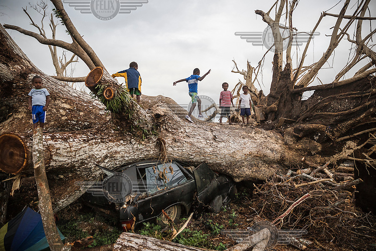 Children play on a fallen tree that came down during Cyclone Pam on 13 Marchs 2015 and has crushed a car on the outskirts of Port Vila.