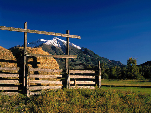Bales of hay and Mount Sopris in the Elk Mountains near Glenwood Springs, Colorado. .  John offers private wildflower tours in the Crested Butte area and throughout Colorado. Year-round.