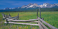 Sawtooth National Recreation Area, ID<br /> Rail fence runs through a meadow of purple penstemon and summer wildflowers with peaks of the Sawtooth Range in the distance